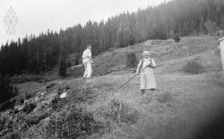 Margit Hauglid og sonen Torjus i slåtten - #KvH 06-059 b