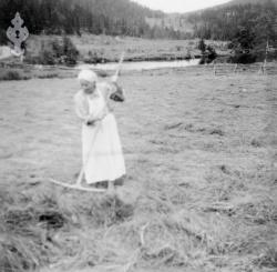 Margit Hauglid i slåtten - #KvH 06-060 b